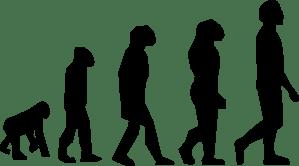 evolution-hi